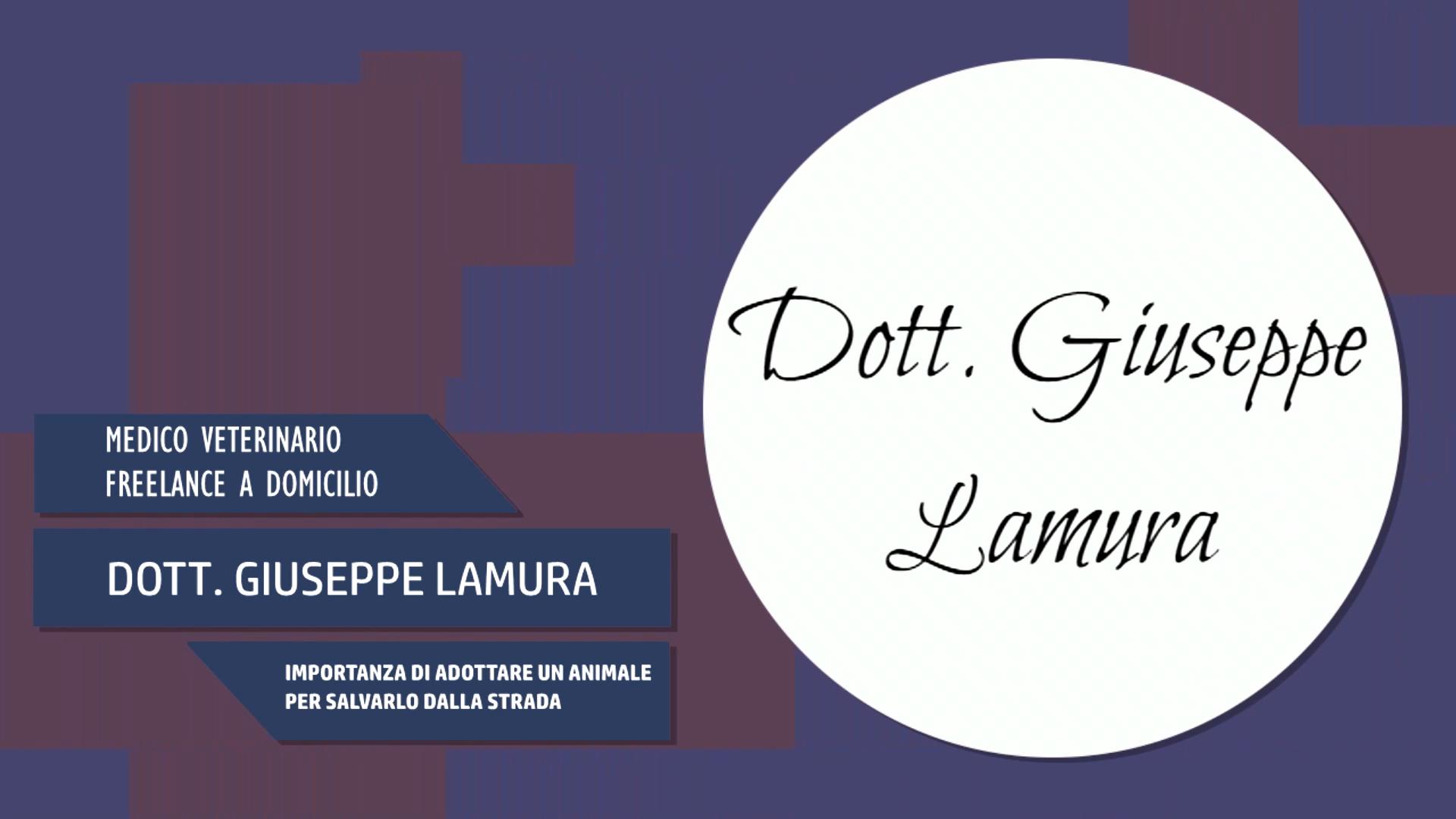 Intervista al Dott. Giuseppe Lamura – Importanza di Adottare un animale