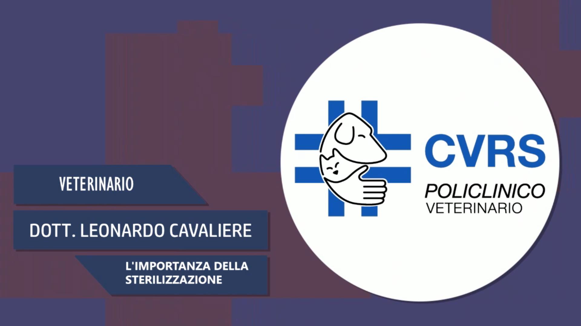Intervista al Dott. Leonardo Cavaliere – L'importanza della sterilizzazione