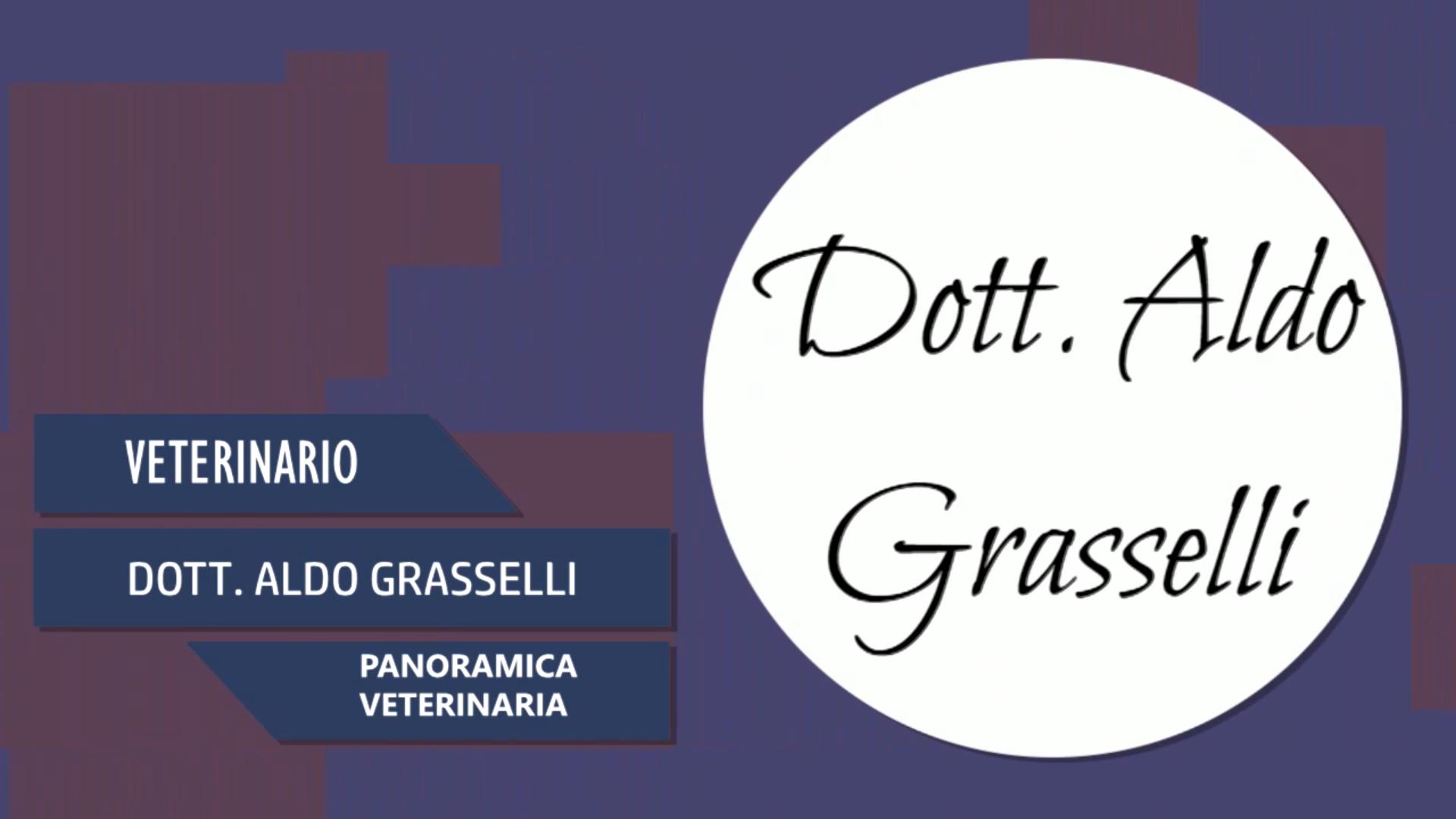 Intervista al Dott. Aldo Grasselli – Panoramica veterinaria