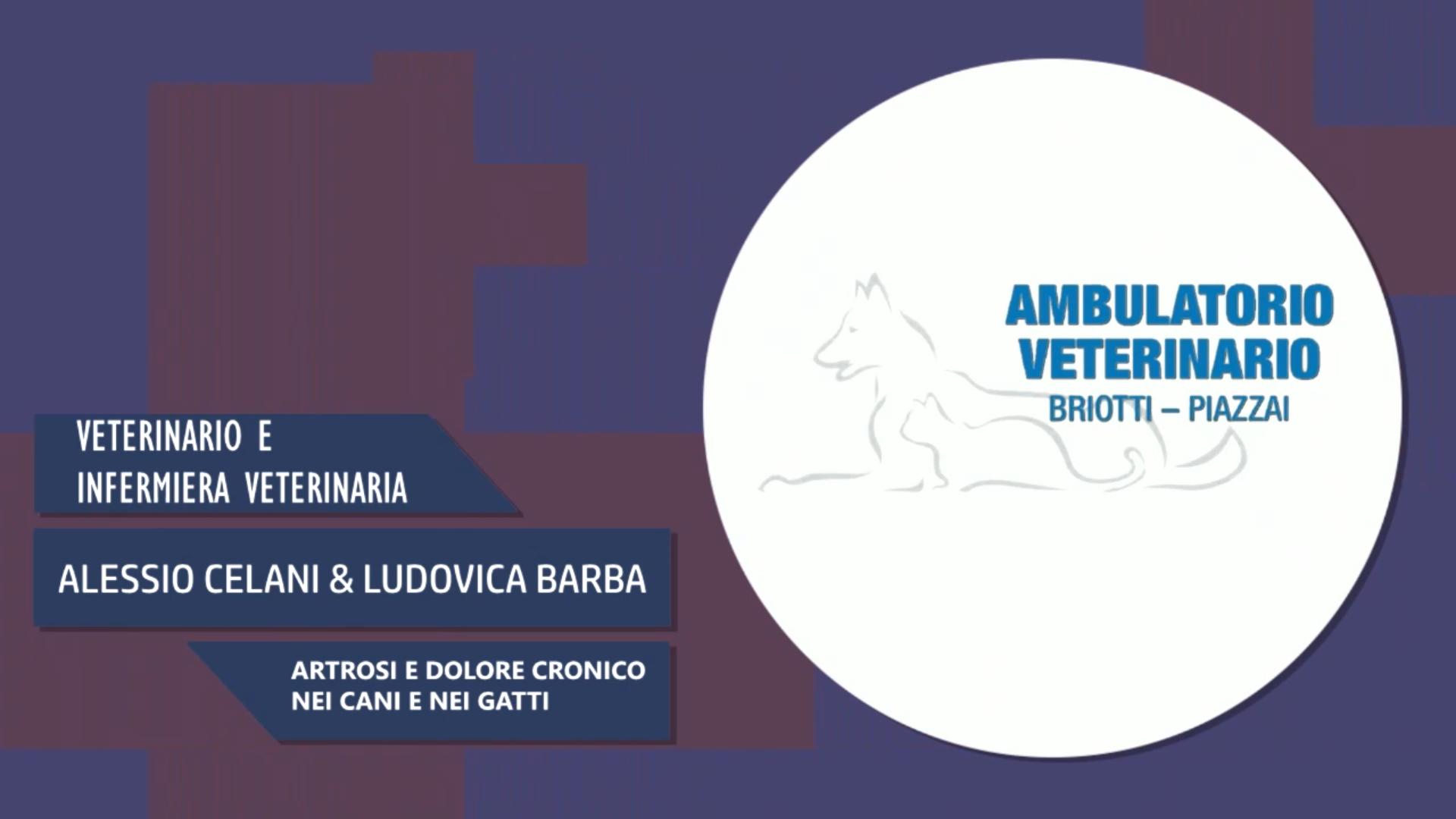 Intervista a Alessio Celani & Ludovica Barba – Artrosi e dolore cronico in cani e gatti