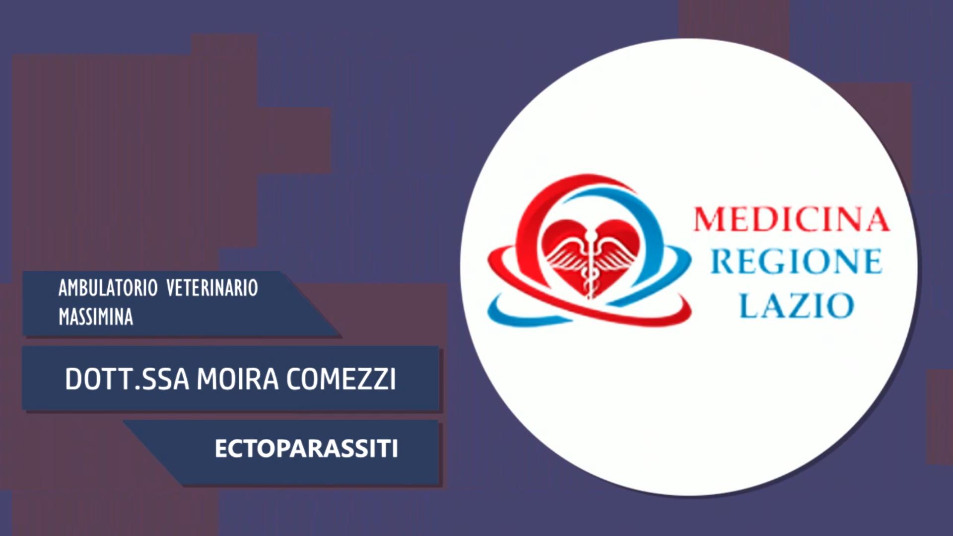 Intervista alla Dott.ssa Moira Comezzi – Ectoparassiti